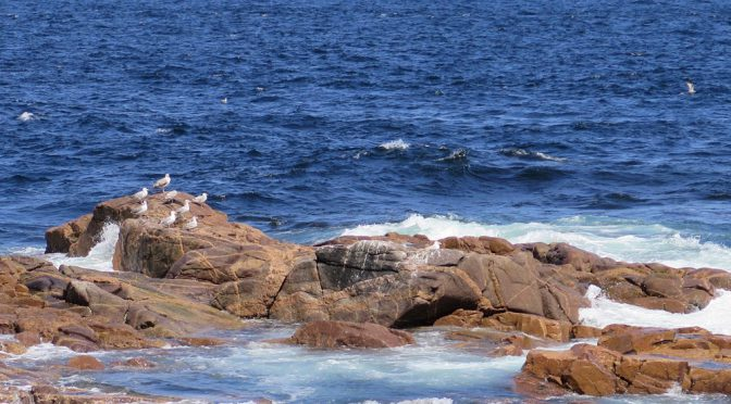 Secret Bays and Coves of Nova Scotia
