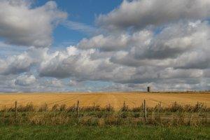 stonehenge006