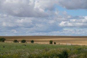 stonehenge032