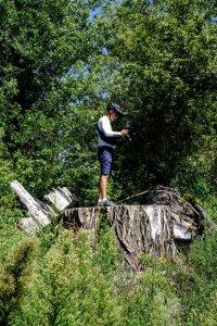 Cedar Falls Trail