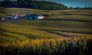 Farmhouse Painting