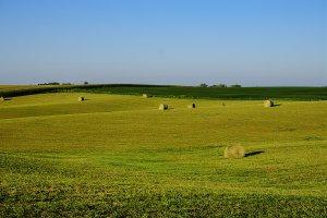 John's Field