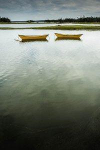 Acadian Dorries