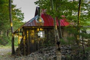 Bear River Cottage