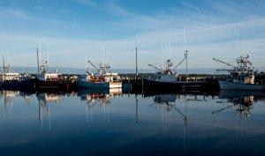 Lobster Fleet