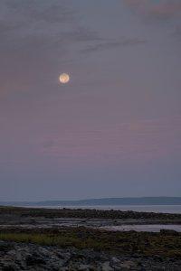 Moon over Bayside