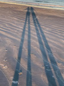 Shadow Puppets Crescent Beach