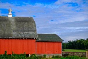 Red Barn at Moose Lake