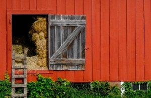Red Barn at Moose Lake 2