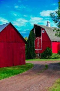 Red Barn at Moose Lake 3