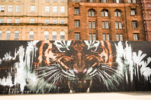 GlasgowMuralWalk015