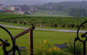 Chaumette Hills