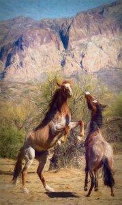 Wild Horse Hopper 1-studio